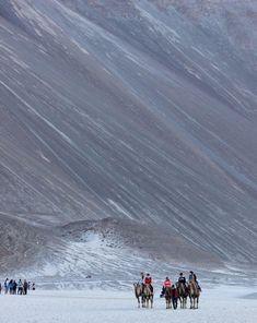 Nubra valley , Ladakh , India. #culturetravelindia