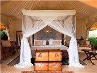Kenya > Rift Valley > masaimara > Safari Glamping - Cottar's 1920s Safari Camp