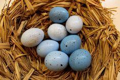 Grimmskram: Gefakte Eier