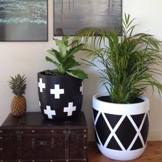 Design Twins Handmade Concrete Homewares and Lightweight Pots.