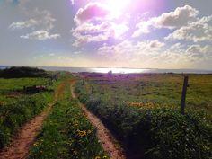 """Von unserer """"Sonne"""" zum """"Nordstern wandern, der Sonne entgegen - einfach traumhaft! Mit Blick nach Dänemark."""