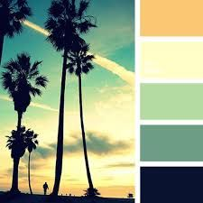 Image result for socal color palette