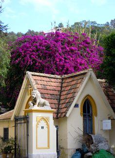 MALAGA, Spain.......bogenvia......gorge!!!