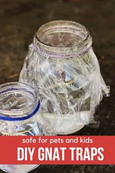 Get rid of gnats in the house quick with these DIY gnat traps. These homemade gnat traps (that actually work!) will have your kitchen naturally gnat-free without harsh chemicals. Homemade Gnat Trap, Diy Gnat Trap, Gnat Traps, How To Catch Gnats, How To Get Rid Of Gnats, Getting Rid Of Nats, Kitchen Hacks, Kitchen Sink, Pest Control