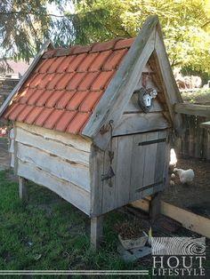 kippen dakpannen - Google zoeken