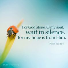 For God alone, O my soul, wait in silence, for my hope is from him. (Psalm 62:5 ESV) More at http://ibibleverses.christianpost.com/