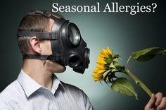"""""""Seasonal Allergy Blend"""""""