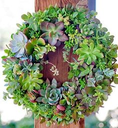 Atlanta Wedding Planners andrewinfryeevents.com #weddings #succulents #weddingdecor
