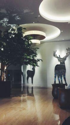 #deer #elegant #vsco