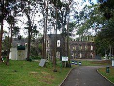 Farley Hill National Park, ruins of the sugar plantation Boss's mansion