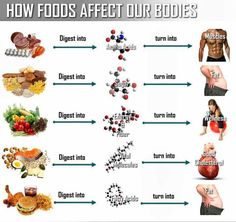 How foods affect our bodies #nutrition #fitness #health