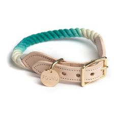 Dip-dyed dog collar. You can make a DIY version by dipping a rope collar in any color of Rit Dye.