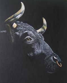 Stier, Malerei, Konkret