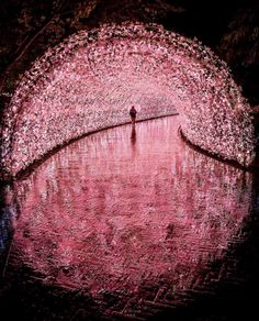 """""""The entrance to another world"""" Beautiful Places To Travel, Wonderful Places, Arquitectura Wallpaper, Pink Aesthetic, Pretty Pictures, Aesthetic Pictures, Beautiful Landscapes, Aesthetic Wallpapers, Backdrops"""