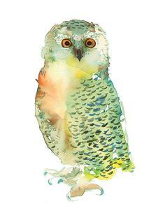 Green Owl art print archival fine art by courtneyoquist on Etsy