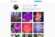Las 7 fotos con más me gustas del Instagram de Jardinería