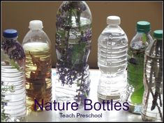 Nature Discovery Bottles by Teach Preschool.