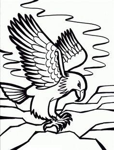 american bald eagle | bald eagle, eagle and american symbols - American Bald Eagle Coloring Page