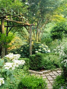 Love this shade garden with huge hydrangea, natural timber pergola, cobblestone path, boxwoods, and overall 'secret garden' feel.