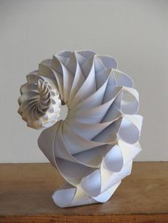 Shell, A Gift From the Sea (28)