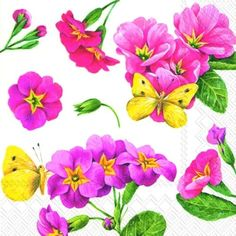 PINK-PRIMROSE-white-Floral-Flowers-paper-lunch-napkins-new-20-in-pack