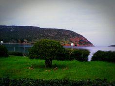 Porto rafti greece