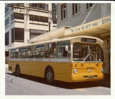Image John Turnbull: Auckland Regional Authority No Mercedes 0305 NZMB/VOV new Photographed 1976 in Albert Street, Auckland. Busse, Auckland, Once Upon A Time, Regional, New Zealand, The Neighbourhood, Nostalgia, Australia, Memories