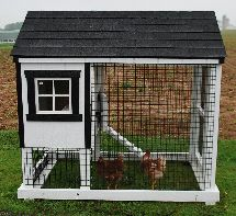Cute Little Coop - this would be so cute in my back yard. get on it Justin