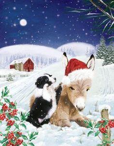 Bilder Weihnachten Tiere.Die 282 Besten Bilder Von Tiere Gezeichnet I Winter