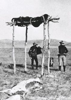NWMP officers at the site where a Sioux warrior mortally wounded at Little Bighorn received the honour of a traditional air burial. American Indian Wars, Native American Cherokee, Native American Warrior, Native American Images, Native American Tribes, Native American History, Sioux, Battle Of Little Bighorn, Trail Of Tears