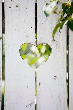 White picket fence...traditional and lovely. Add little heart cutouts...country cottage beautiful!