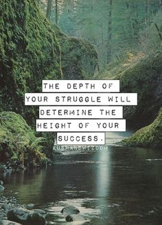 'The depth of your struggle will determine the height of your success'