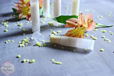 Craft this easy unflavored unscented lip balm DIY and save some money at the checkout! This idea is perfect for gifts or just keeping for yourself! Baby Guinea Pigs, Diy Lip Balm, Mini Pigs, Make Beauty, Beauty Recipe, Crochet Patterns Amigurumi, Christmas Candy, The Balm, Lips