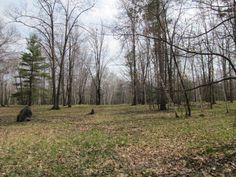 #Rare #beautiful 36 #acres #parcel #construction #build #dreamhome #subdivide #lowtaxes  N3085 Quinnesec Lake Antoine Rd., #IronMountainMichigan  #BreitungTownship  $119,900  MLS # 1059463