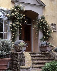 """""""Crepescule"""" noisette rose trained over the doorway. Great look for old Brownstones!  Ward A. Lile Design"""