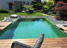 Buy Plants, Cool Plants, Indoor Water Fountains, Mini Pool, Natural Swimming Pools, Good Environment, Swimming Pool Designs, Water Plants, Cool Pools