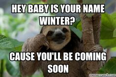 Sloth memes have taken the Internet by storm with a large number of memes in categories from cute to naughty, Check out our funny meme! Funny Facts, Funny Memes, Sloth Memes, Sloth Humor, Funny Shit, Creepy Sloth, Ice Age Movies, Sleep Early, Viajes
