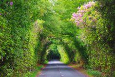 The Vee Pass, Knockmealdown Mountains, Clogheen, Tipperary
