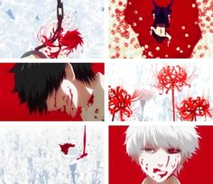 (gif set) Red Spider Lily/ Higanbana : ᴛʜᴇ flowᴇʀ of ᴅᴇaᴛʜ ❝ Red spider lilies bloom along the paths of departing lovers; companions who for one reason or another are destined to never meet again. ❞     Kaneki     Tokyo Ghoul