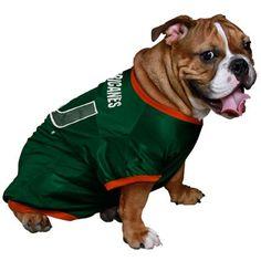 Rigby needs this for football season #miami #hurricanes