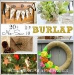CONFESSIONS OF A PLATE ADDICT: Easy and Inexpensive...20+ No-Sew Projects for Burlap