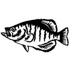 For your consideration is a die-cut vinyl Crappie Fishing