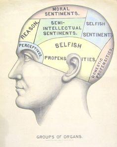 "Vintage Surreal Print ""Phrenology Chart"" Antique Medical Illustration - Fortune Telling Occult Anatomical - Head Skull Gothic Dark VIctorian. $25,00, via Etsy."