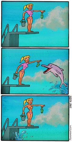 Dizem que os golfinhos são mais inteligentes que humanos.