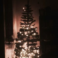 Our Christmas tree at night!