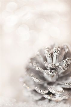glitter-covered pine cone