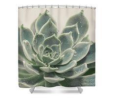 Azul verde suculento cortina de ducha baño botánico
