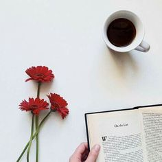 Book flatlay inspiration with coffee and botanical/organic elements/splash of color Flat Lay Photography, Coffee Photography, Minimal Photography, Photography School, Photography Backdrops, Ios App, Book Flatlay, Coffee Flatlay, Pause Café