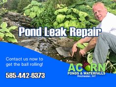 Acorn's pond service calls in Rochester (NY) and the Western (NY) area for leak detection and other water feature problems consist of a troubleshooting methodology to narrow down the source and get to the repair as quickly as possible.