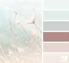 Beautiful Color Schemes